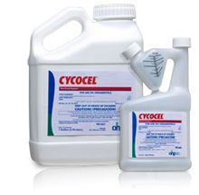 Cycocel Plant Growth Regulator