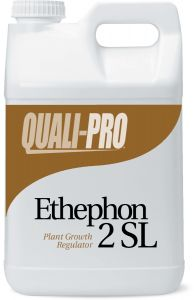 Ethephon 2SL Growth Regulator